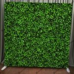 Our hedge fabric backdrop